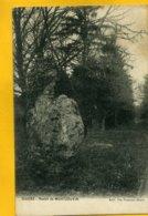 28IL20 -Illiers -  Menhir De Montjouvin - France