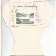 ARGENTINA ENTERO POSTAL ILUSTRADO TIERRA DE FUEGO 1902 A ALEMANIA - Filatelia Polar