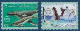 """Nle-Caledonie YT 844 & 845 """" Baleine à Bosse """" 2001 Neuf** - Neufs"""