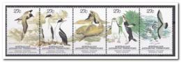 Australisch Antarctica 1983, Postfris MNH, Penguins, Birds - Australisch Antarctisch Territorium (AAT)