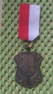 Medaille :Netherlands  - .E.W.B - Enschede  / Vintage Medal - Walking Association - Nederland