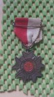 Medaille :Netherlands  - .5 E. Avondvierdaagse  / Vintage Medal - Walking Association - Nederland