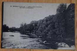 44 : Boussay - Côteau De La Rive Droite De La Sèvre à Chaudron - (n°16266) - Boussay