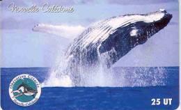 Nouvelle Caledonie Telecarte NC103 Baleine Cetace Côte 20, Ut. TBE - Neukaledonien