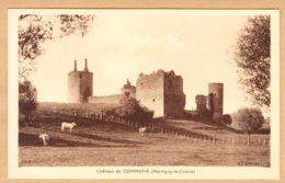 CPA Martigny-le-Comte, Chateau De Commune, Ungel. - France