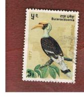 NEPAL  -  SG 349   - 1977  BIRDS: BUCEROS BICORNIS    -  USED ° - Nepal