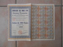 99Sv  Lot De 15 Actions De 100frs Au Porteur Mines D'or De Guyane Française - Autres