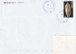 13092  TUUHORA - ANAA - TUAMOTU - POLYNÉSIE FRANÇAISE - LINÉAIRE - Lettres & Documents