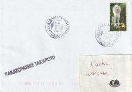 13094  FAKATOPATERE - TAKAPOTO - TUAMOTU - POLYNÉSIE FRANÇAISE - LINÉAIRE - Lettres & Documents