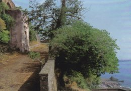 ACIREALE XIPHONIA - CATANIA - LE CHIAZZETTE - Acireale