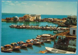 SYRIE - SYRIA - Tartous - Le Rivage - TARTUS - The Shore - Siria