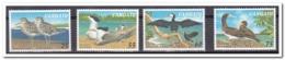 Vanuatu 1997, Postfris MNH, Birds ( 2 Scans ) - Vanuatu (1980-...)