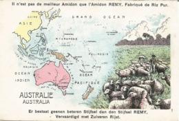 Publicité AMIDON REMY - Carte De Géographie De L'Australie - N'a Pas Circulé - Publicité