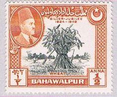 Bahawalpur 23 MLH Wheat 1949 (BP36418) - Bahawalpur