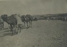 Maroc Oujda Presence Militaire Française 12 Anciennes Photos 1910 - Afrique