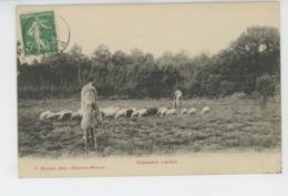 LANDES - Echassiers Landais - Edit. F. BERNEDE Arujuzanx - Morcenx - Ohne Zuordnung