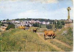 (15) St Urcize Vue Generale Prise De La Croix Des Oiseaux  (avec Des Vaches) - Francia
