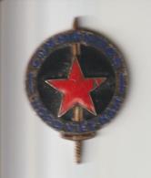 INSIGNE  GUERRE  INDOCHINE  : COMMANDO  NORD-VIETNAM - Armée De Terre