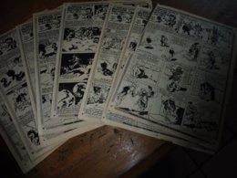 1952  Moustache Et Trottinette ...dans La Véritable Histoire De Barbe Bleue     (Dessins De CALVO), Etc - Livres, BD, Revues