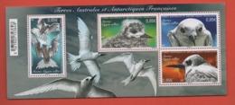 W34  TAAF Terres Australes Et Anrtiques °° Bloc F798 2017 Oiseau - Blocs-feuillets