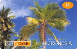 Micronesie Old Postcard - $5 - Micronesia