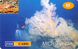 Micronesie Old Postcard - $5 - Micronésie