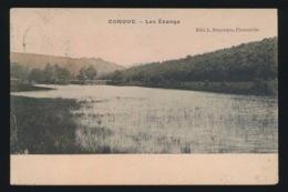 CONQUE - LES ETANGS - Florenville