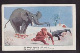 CPA éléphant Singes Non Circulé - Elephants