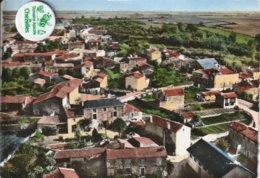 79 - Très Belle Carte Postale Semi Moderne Dentelée De  ECHIRE  LE VILLAGE D'ANDROLLET   Vue Aérienne ( A Voyagé ) - Brioux Sur Boutonne
