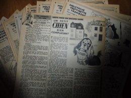 """1952  Moustache , Trottinette Et Trombone Dans L'histoire Du """"Malabar-Circus""""      (Dessins De CALVO), Etc - Livres, BD, Revues"""