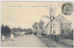 FRANCORCHAMPS  -  Magnifique Lot De 36  Cartes Postales Anciennes - Stavelot