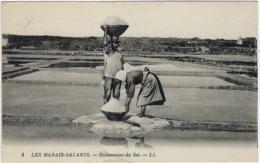 44 Les Marais Salants  Enlevement Du Sel - France