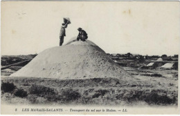 44 Les Marais Salants Transport Du Sel Sur Le Melon - France