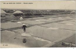 44 Les Marais Salants Au Bord De L'ocean - France