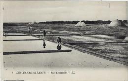 44 Les Marais Salants Vue D'ensemble - France