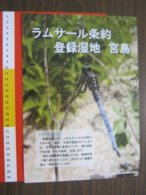 Z.08 JAPAN GIAPPONE DEPLIANT TURISMO 2019 ISOLA ISLE MIYAJIMA GRANDE TORII BIG LIBELLULA INSETTO NATURA - Dépliants Turistici