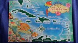 CPM GEOGRAPHIQUE THE CARIBBEAN LES CARAIBES POISSON COQUILLAGE FLEUR PERROQUET - Sonstige