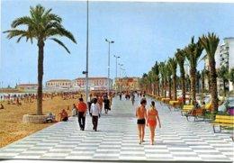 Espagne - Comunidad Valenciana - Alicante - Playa Del Postiguet Y Paseo De Gomis - Beascoa 6803 - 6564 - Alicante