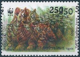 B6056 Russia Rossija Fauna Animal Tiger (250 Rubel) Organization WWF ERROR - Big Cats (cats Of Prey)