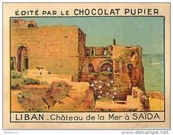 PU3     LIBAN  SAIDA  CHATEAU DE LA MER   ASIE SYRIE ALAOUIDES 7 X 5 Cm  Chocolat Café - Old Paper