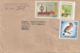 Iraq 1969 Baghdad Hoopoe Upupa Epops Labour Day Adam's Tree Christianity Registered Cover - Irak