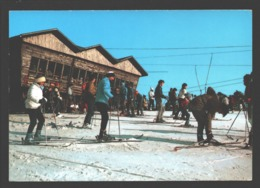Ovifat / Robertville - Piste De Ski - Altitude 615 Mètres - Ski De Fond / Langlauf - Animation - Weismes
