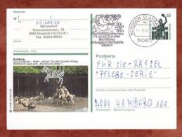 P 139 Bavaria Muenchen, Abb: Duisburg Zoo, MS Bergisch Gladbach, Nach Hamburg, 1992 (80587) - Cartoline Illustrate - Usati