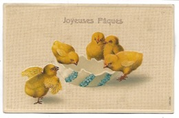 JOYEUSES  PAQUES - Poussins - Carte Gaufrée - Pâques