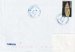13099  TURIPAOA - MANIHI  - TUAMOTU - POLYNÉSIE FRANÇAISE - LINÉAIRE - Lettres & Documents