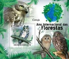 Mozambique, 2011. [moz11118] Owls, (Asio Madagascariensis). (s\s+block) - Owls