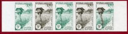 New Caledonia 1960 #313, Color Proof Stripe Of 5, Mail Box And Mail Bus - Neukaledonien