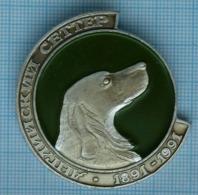 USSR / Badge / Soviet Union / UKRAINE. Fauna. Dog. English Setter. 1891-1991 - Animales