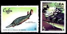 1301 - Fishes - Manjuari - 1969 No Gum - 2003 MNH - Cb - Free Shipping - 1,85 - Poissons