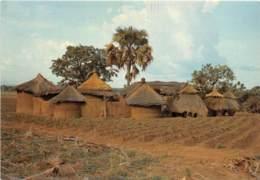 BENIN Ferme Dans L Atacora Ala Frontiere Togolaise 4(scan Recto-verso) MA635 - Benin